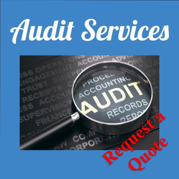CCNG Audit Services